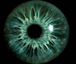 Eye001