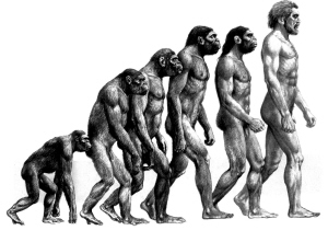 aEvolution-01