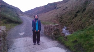 Gee - Bridge into Camelot - Tintagel
