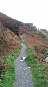Coastal Path to Glebe Cliff